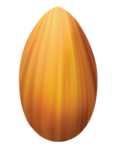 Icon of almond