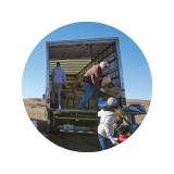 Icon thumbnail of workers moving parcels out of a big truck on a sunny day