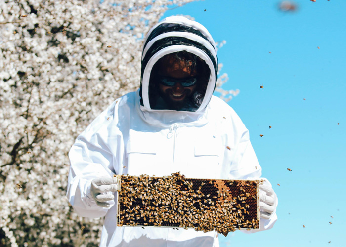 Justin holding a honey bee panel in bee suit