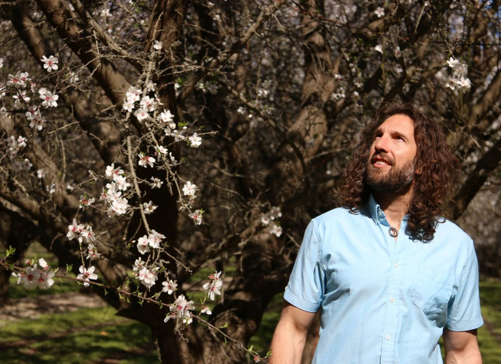 Justin Gold looking up at an almond blossom tree. Wearing a light blue button up shirt.
